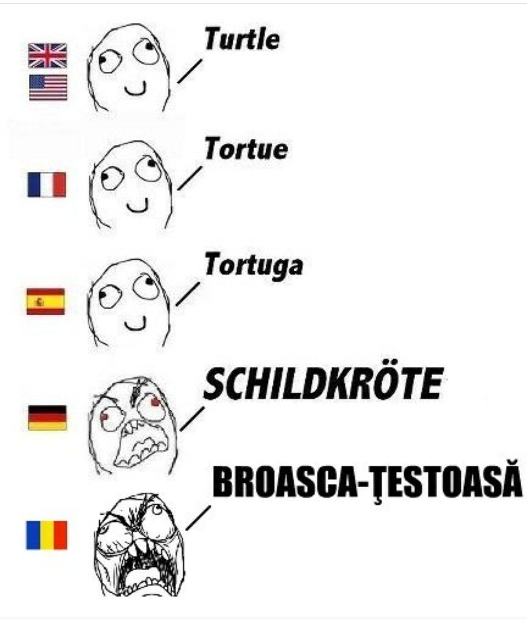 Romanian tearing apart the Romance language family