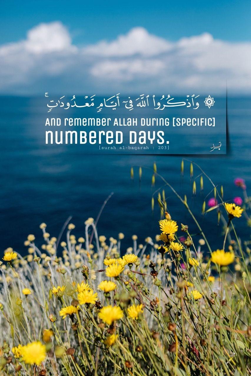 سبحان الله والحمد لله ولا إله إلا الله والله أكبر Beautiful Names Of Allah Daily Inspiration Quotes Surah Al Quran