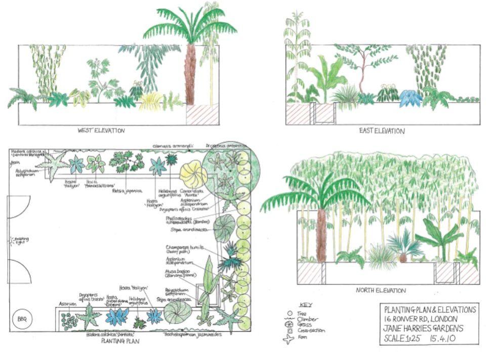 Example Planting Plans Ландшафтный дизайн, Дизайн