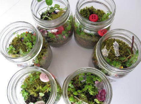 DIY-terrarium-reclaimed-jars - Tiny Living Worlds In Glass: 12 Terrarium Ideas Diy Terrarium