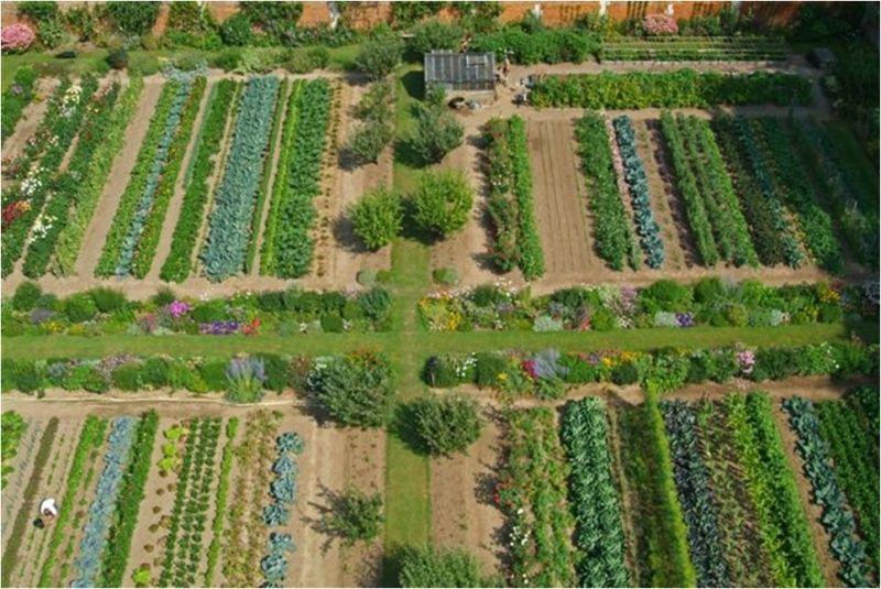 jardin vue de dessus recherche google jardins serres et permaculture pinterest. Black Bedroom Furniture Sets. Home Design Ideas