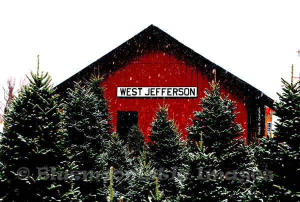 Pin By Debra Patterson On Christmas Photos West Jefferson North Carolina Homes North Carolina Mountains