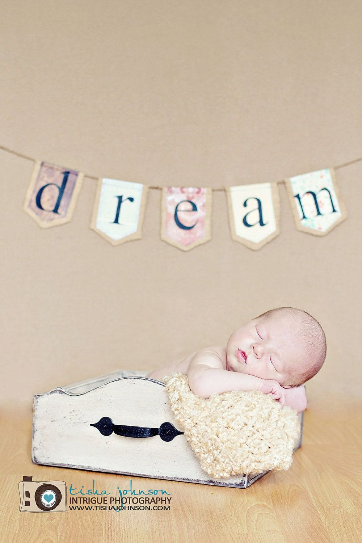DREAM burlap banner by iwishedforyou on Etsy