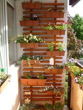 Photo of vertical gardening, small balcony ideas, lattice, summer flowers   – Hinterhof #…
