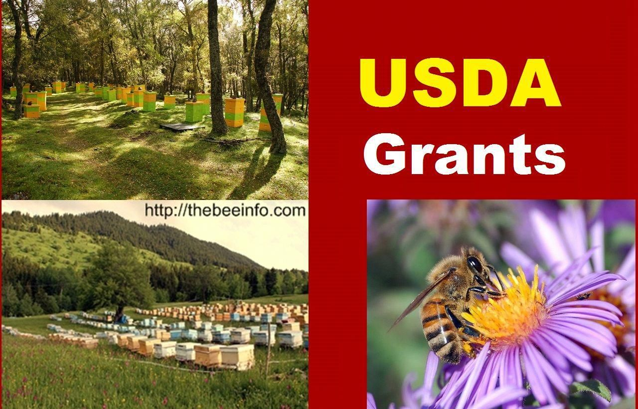 Grants For Beekeeping USDA Grants, Agricultural Grants