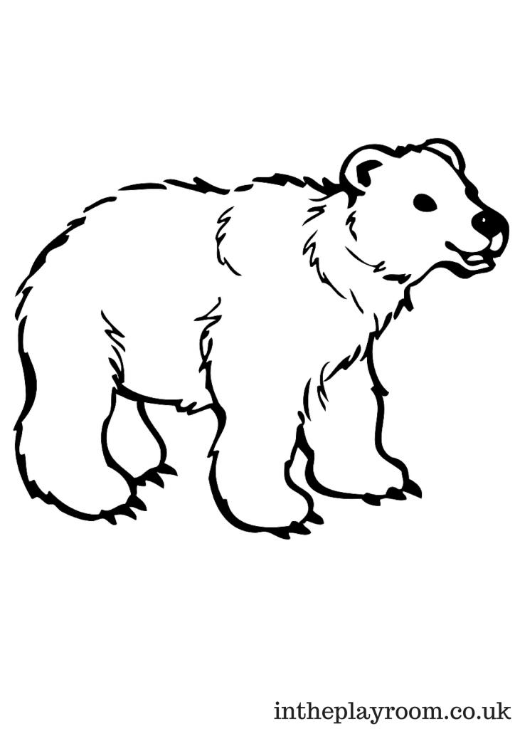 Polar Bear Colouring Page For Kids Animali Attivita Invernali Attivita