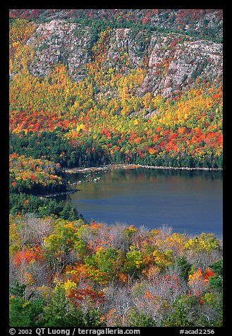 Eagle Lake, surrounded by hillsides covered with colorful trees in fall. #Acadia National Park, Maine, USA.