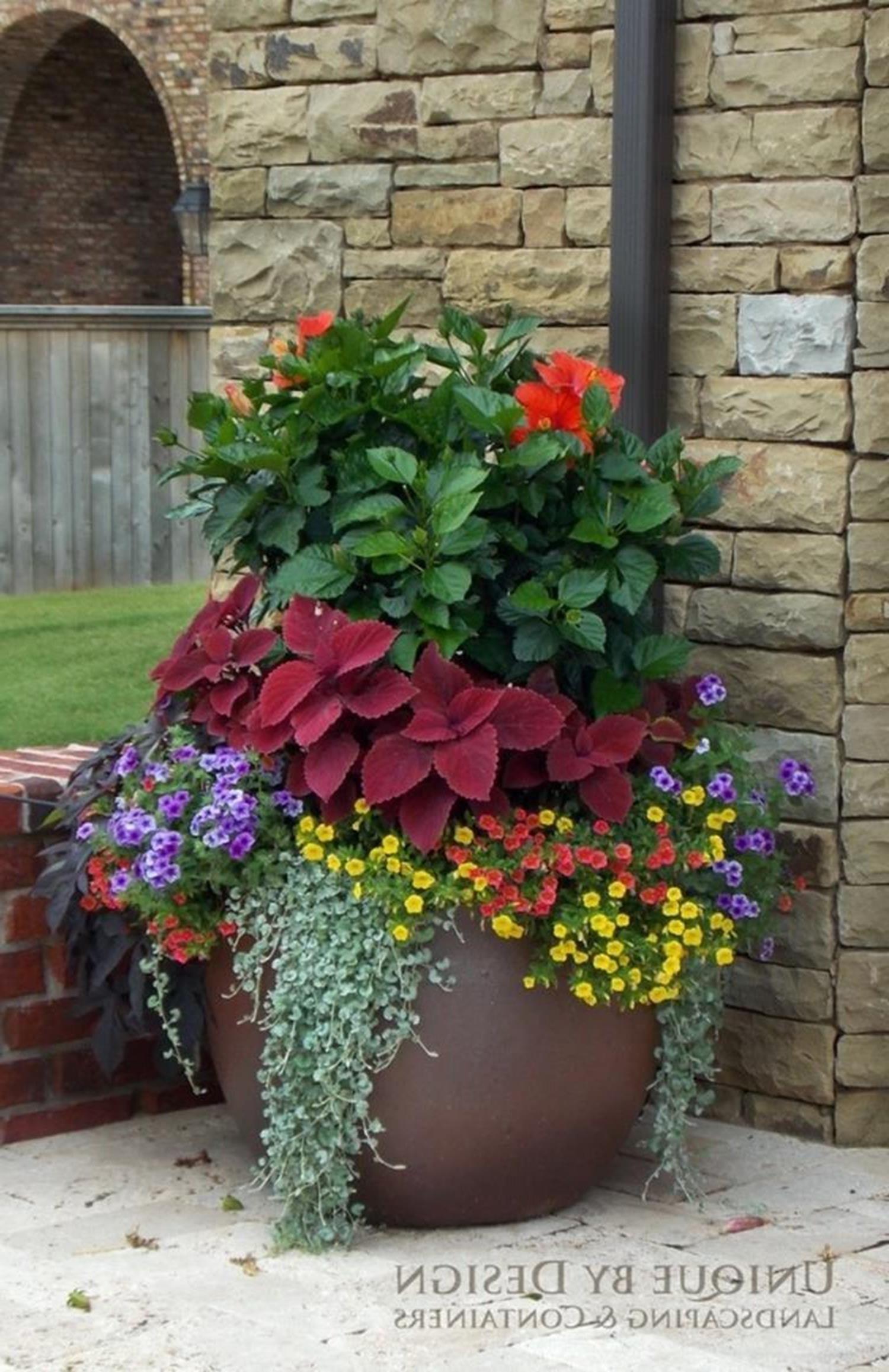 15 Most Beautiful Patio Flower Ideas You Ll Love Patio Flower