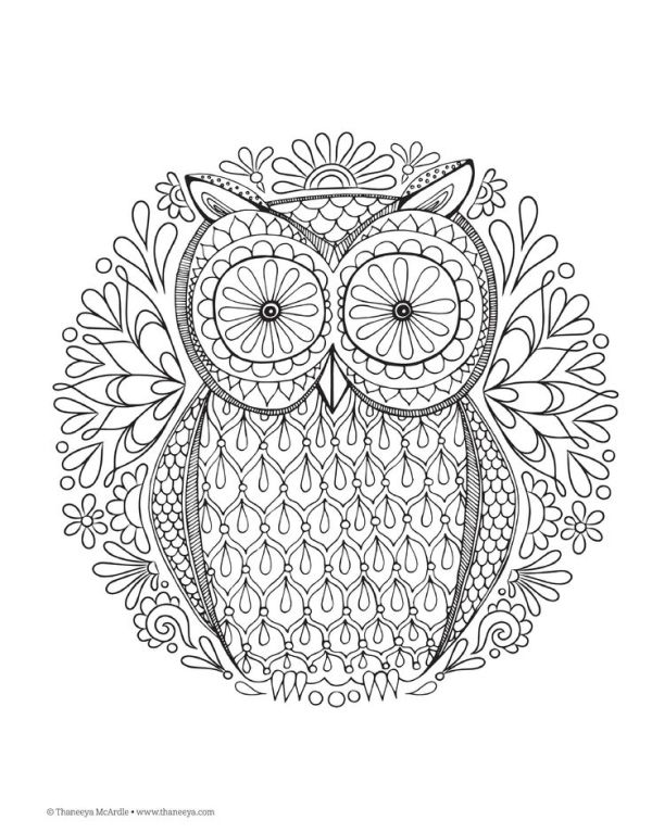 Owl Design Nature Mandalas Printable Colouring Page By