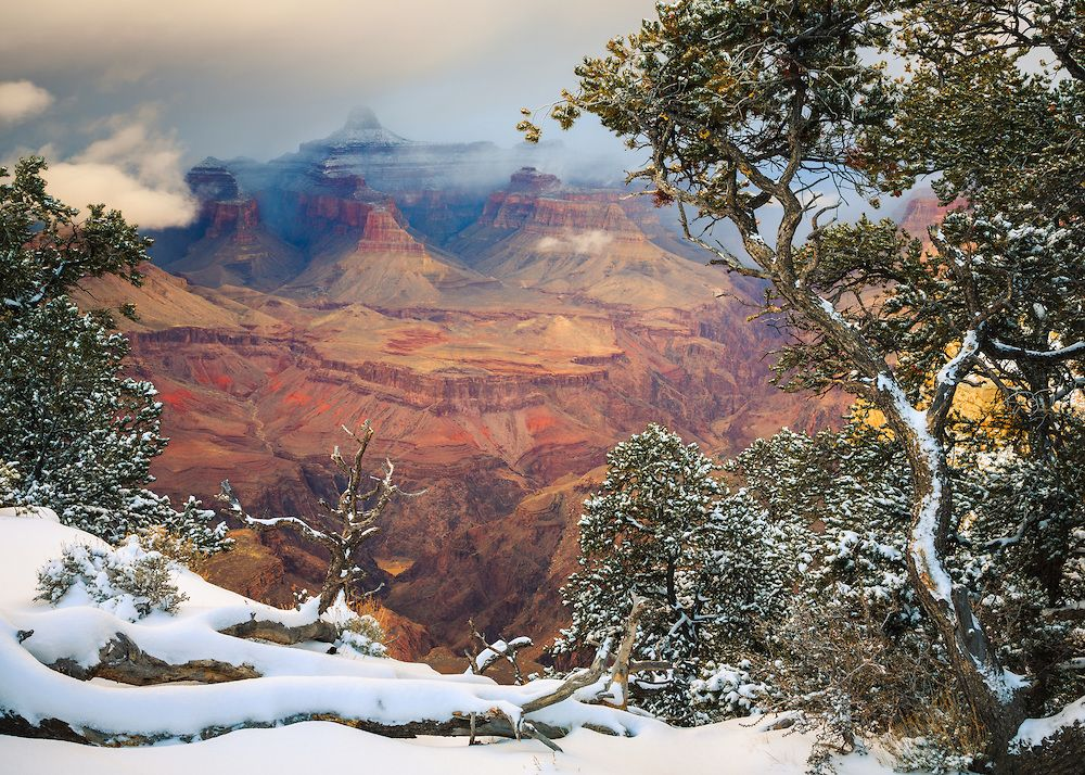 A scene of the grand canyon from the south rim near