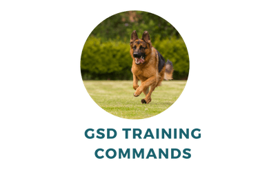 Teach Your Gsd These 29 Essential German Shepherd Training Commands In English And German Dog Behavior Training Dog Training Books Dog Training Techniques
