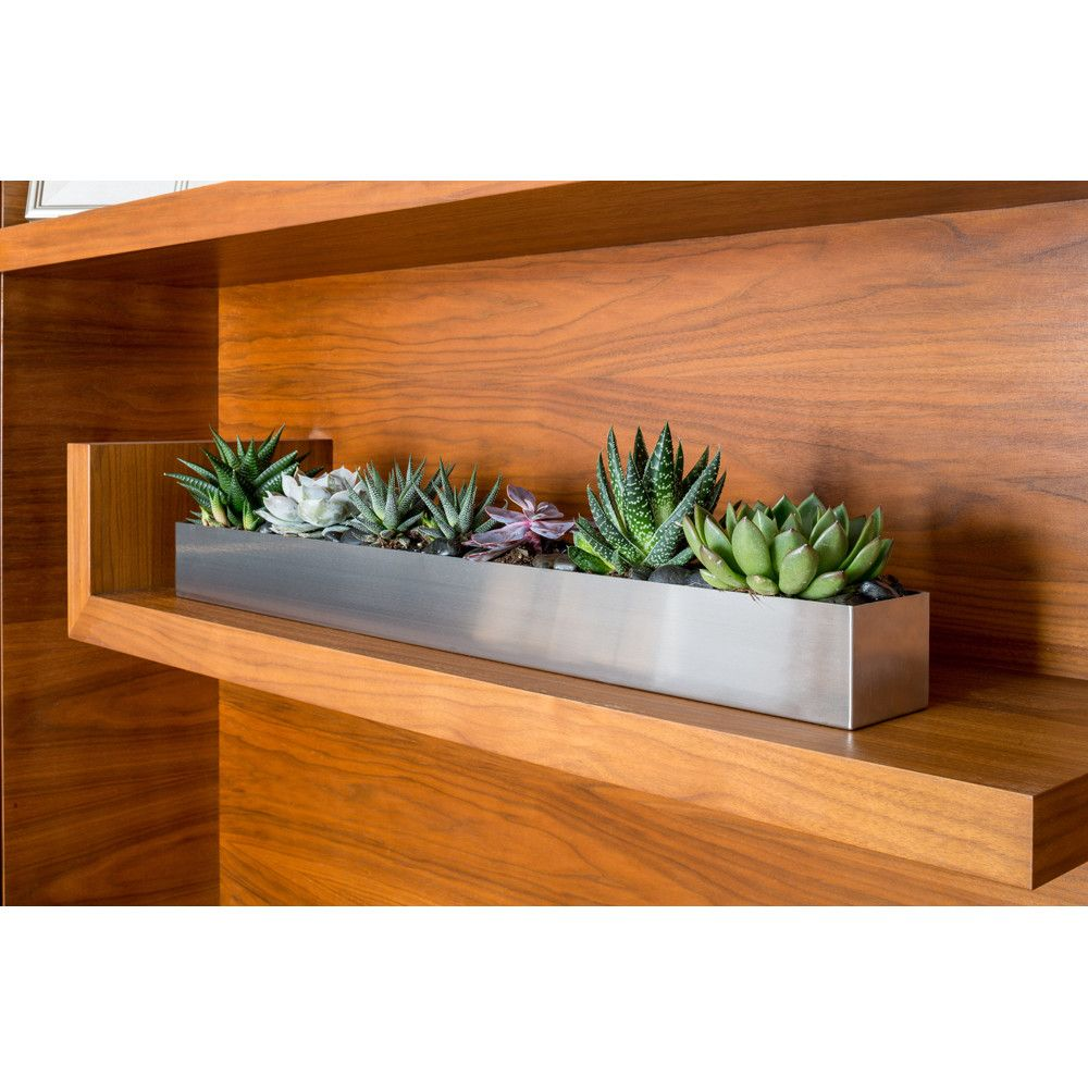 7 Affordable Landscaping Ideas For Under 1 000: Geo Stainless Steel Planter Box In 2019