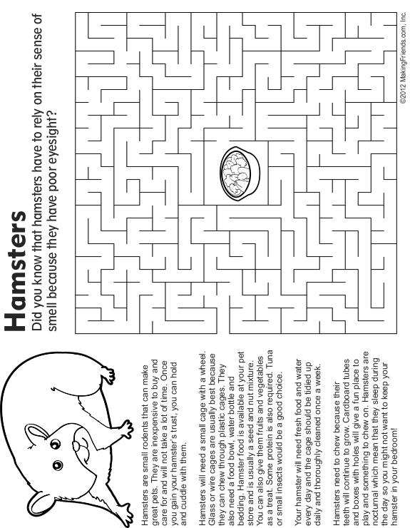Pet Hamster Maze Fact And Coloring Page Coloring Pages