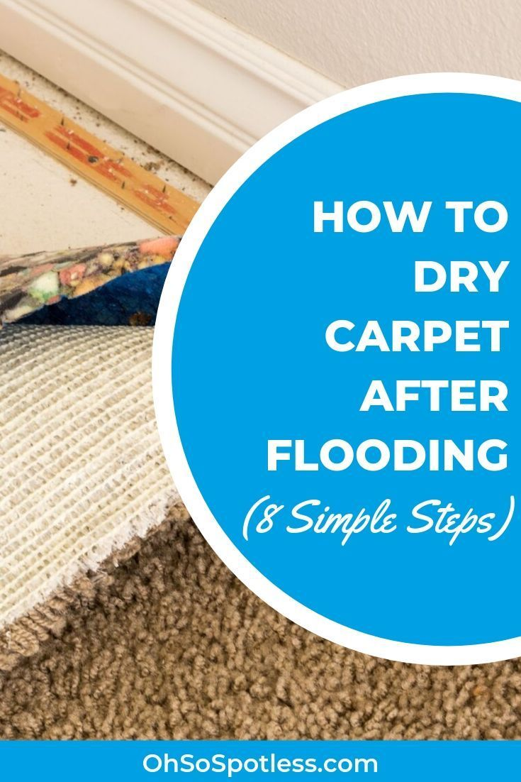 How to Dry Carpet After Cleaning (4 Easy Ways) in 2020