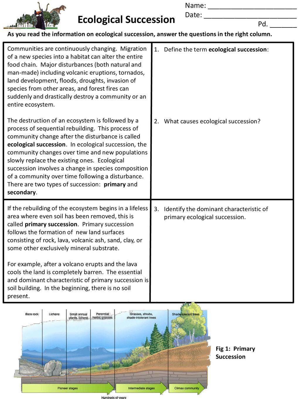 Succession Worksheet Answers - worksheet