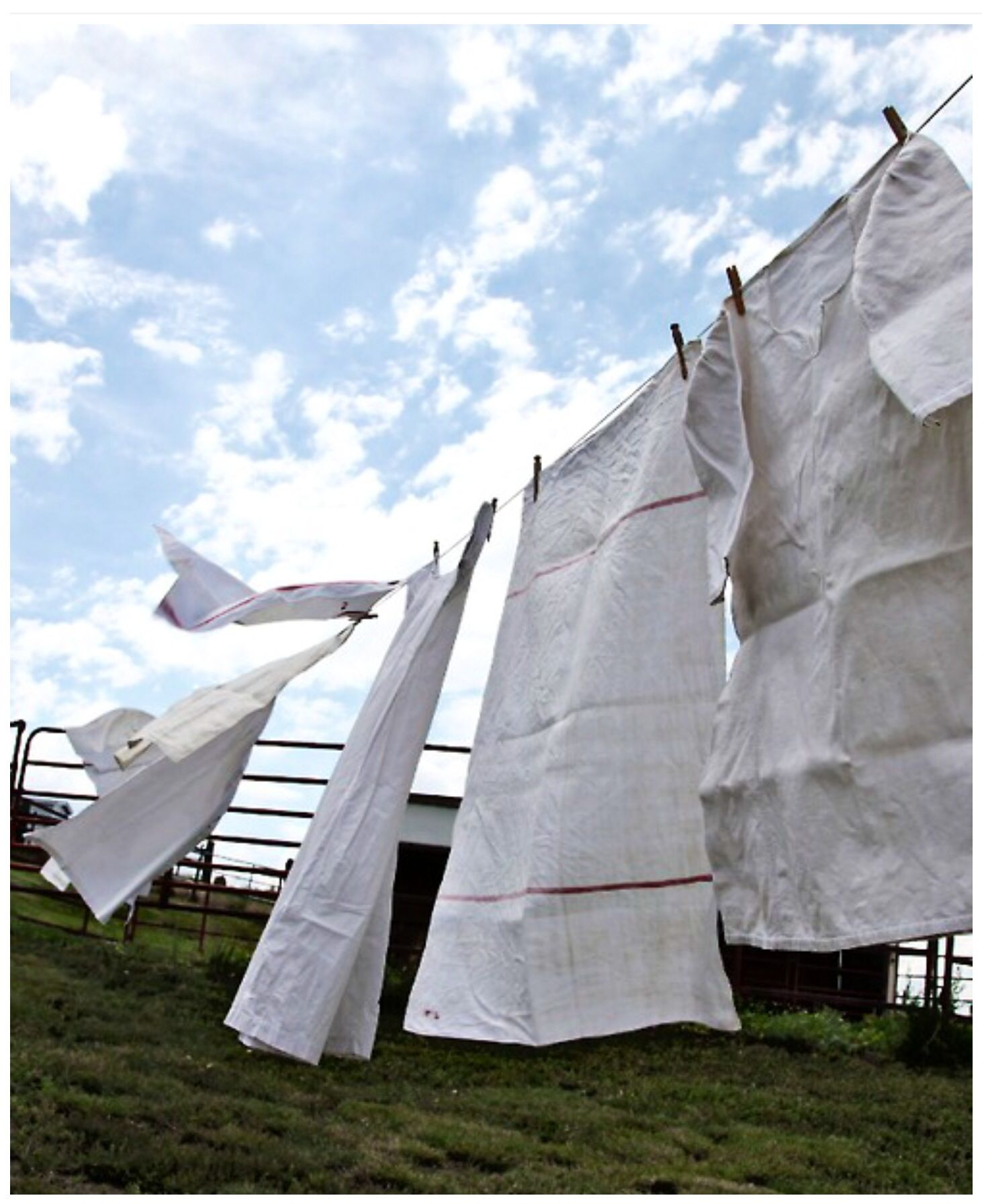 Clean laundry 2014