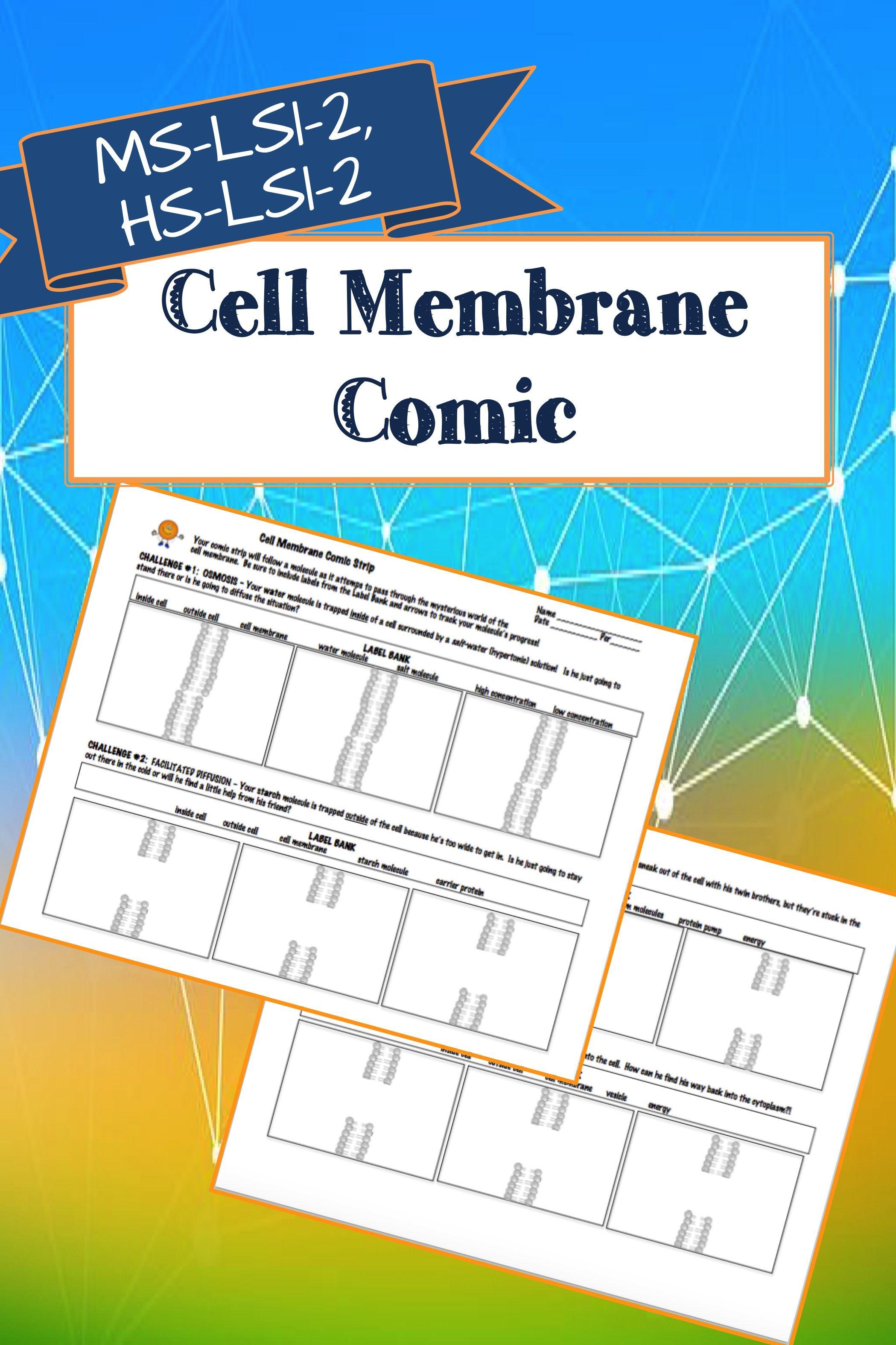 Cell Membrane Comic Ngss Ms Ls1 2 Hs Ls1 2 Cell Membrane Cells Lesson Membrane [ 3149 x 2099 Pixel ]