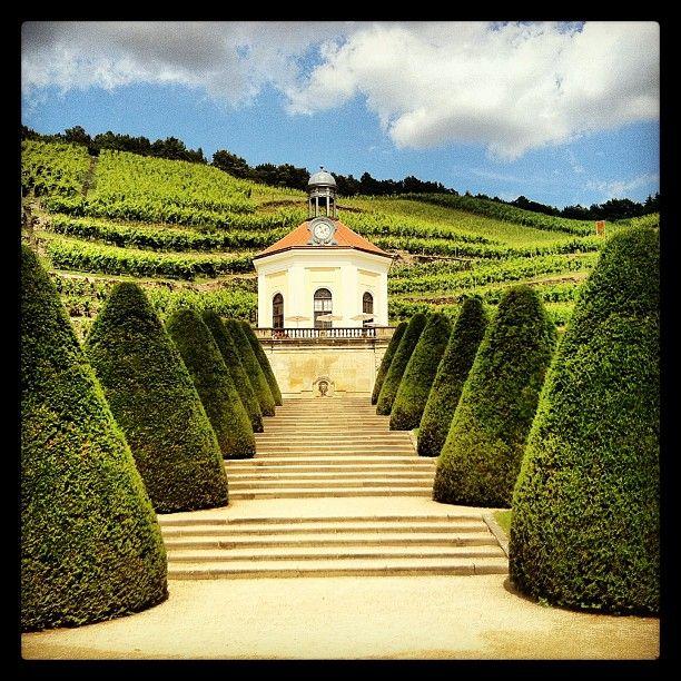 Sachsisches Staatsweingut Schloss Wackerbarth Schloss Wein Parks