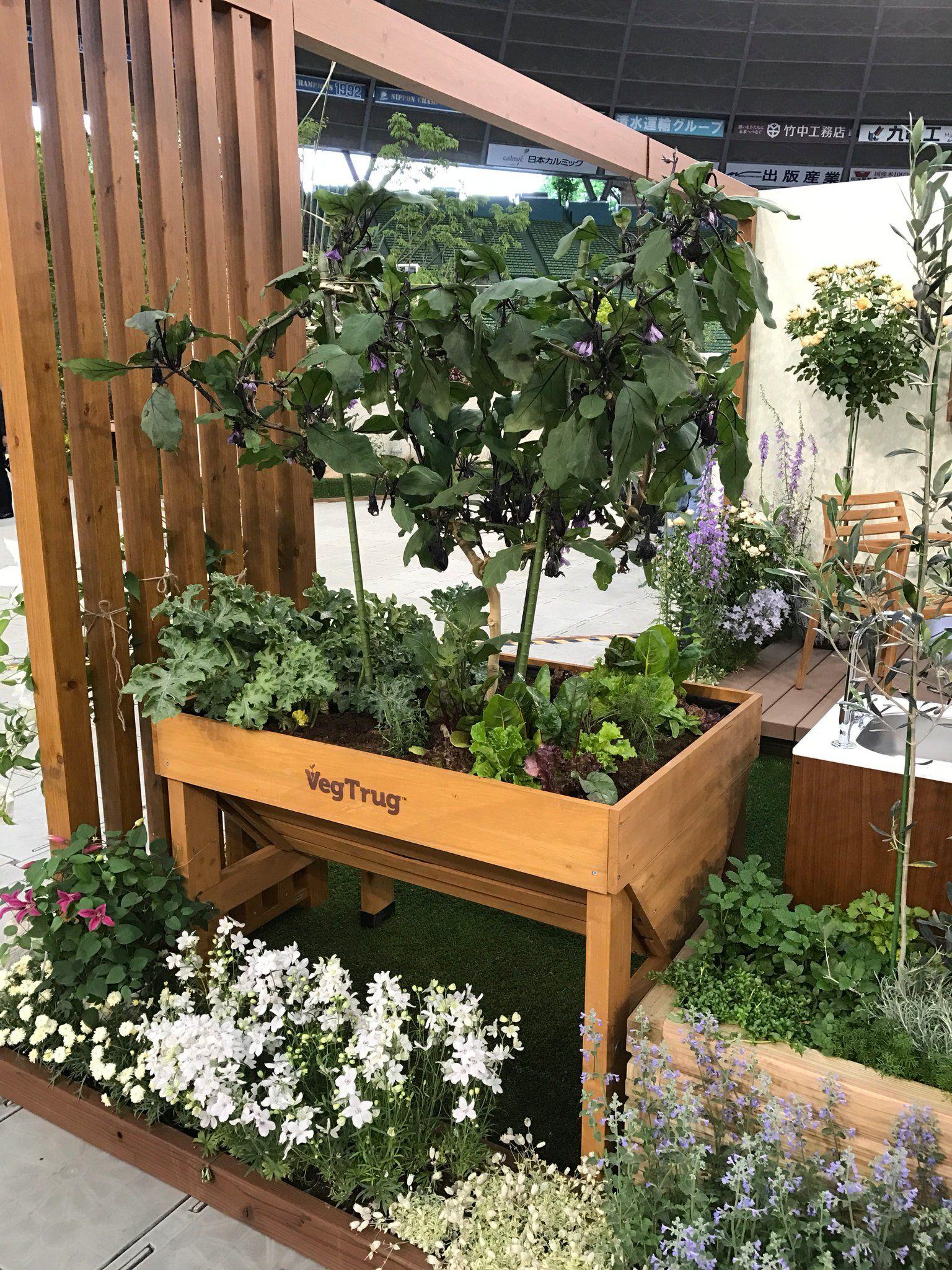 ホームベジトラグ S Aoyama Garden 青山ガーデン Twitter 先日