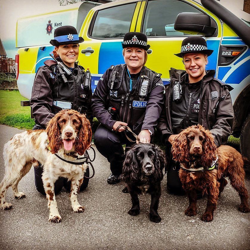 Our Tobacco Sniffer Dogs With The Ladies From Dover Police
