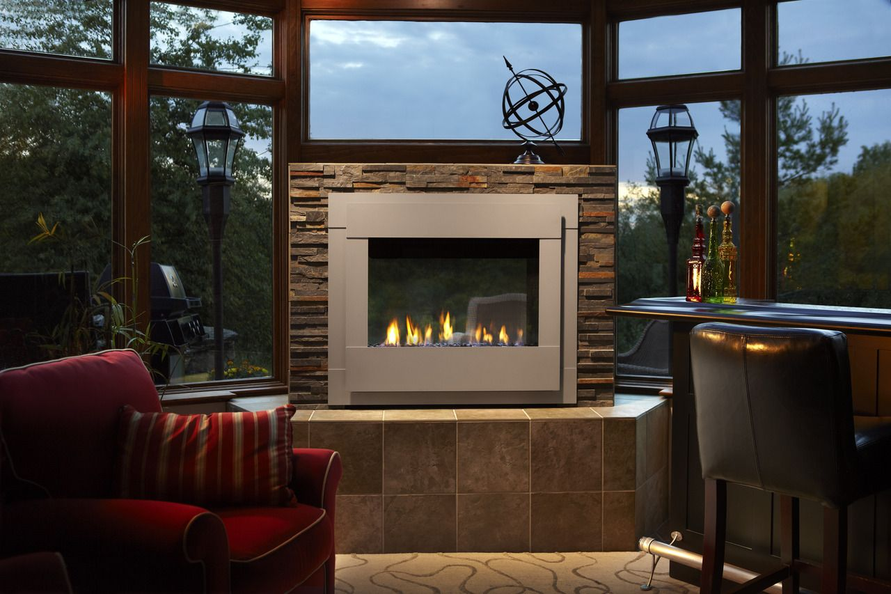 door for views plus ez fireplaces more z products special temco s the fireplace