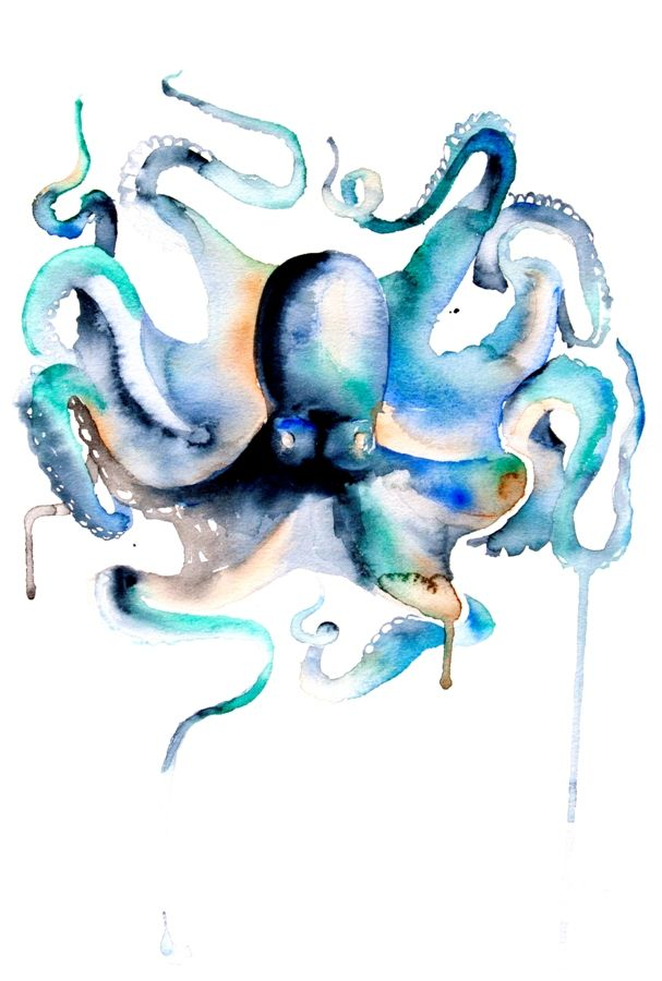 Watercolor Painting Octopus Sulu Boya Suluboya Ve Cizim