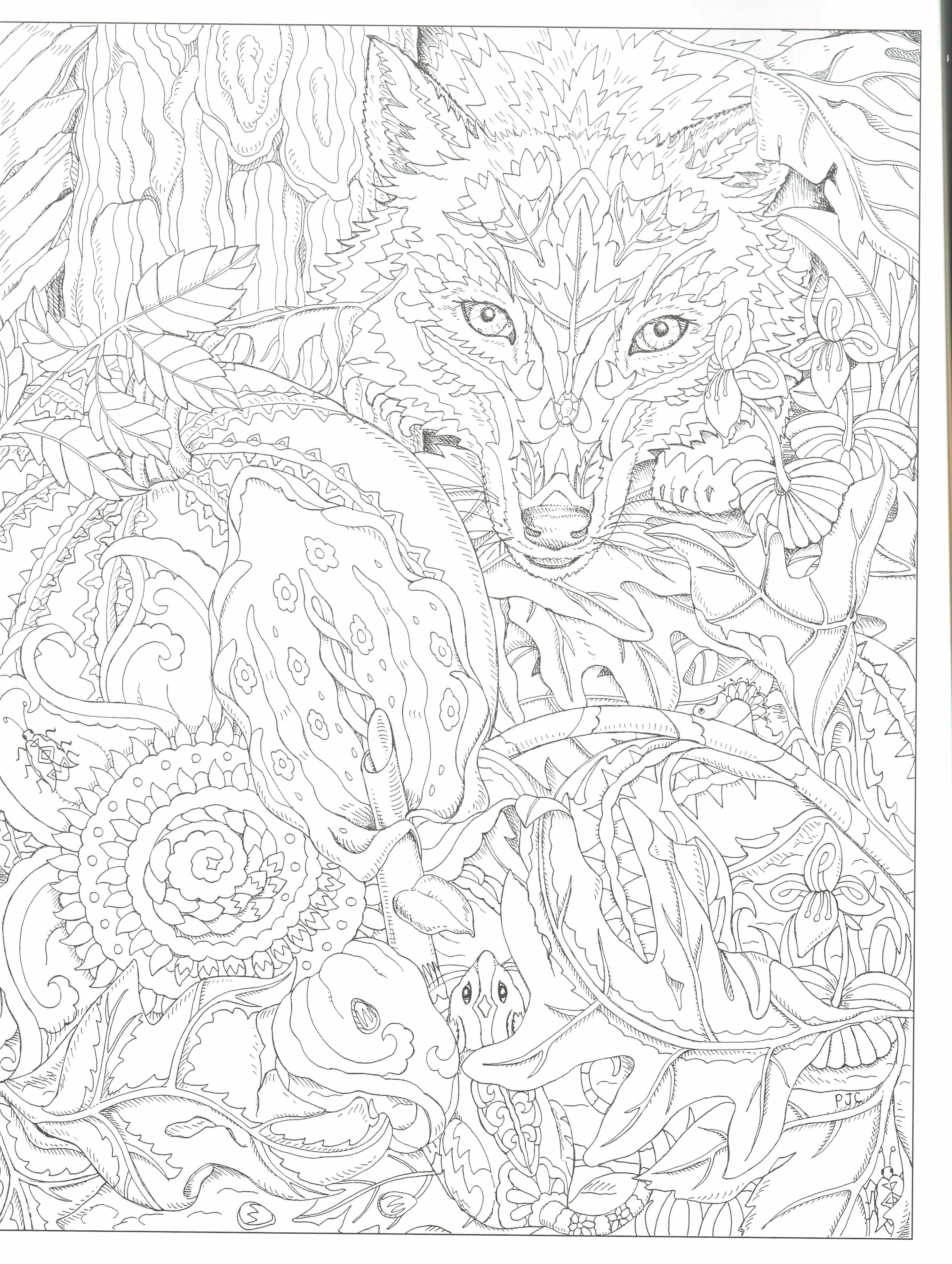 This Will Print On 11x17 Just As Nice As 8 5x11 Angel Coloring Pages Dover Coloring Pages Blank Coloring Pages