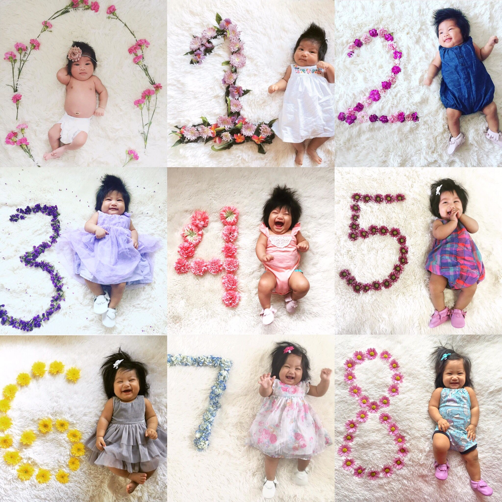 Love This Baby Monthly Pictures Fresh Flower Numbers And Matching Baby Baby Babymonthl Monthly Baby Photos Monthly Baby Pictures Baby Photos With Flowers