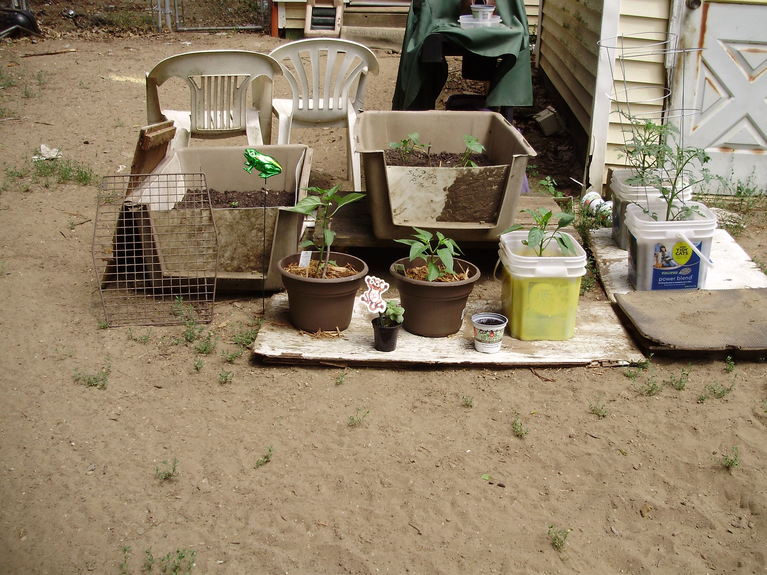my garden using anything I could find since Im strapped for $$ need to make a patio off some sort  behind it??