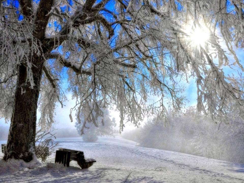 Another Pretty Winter Scene