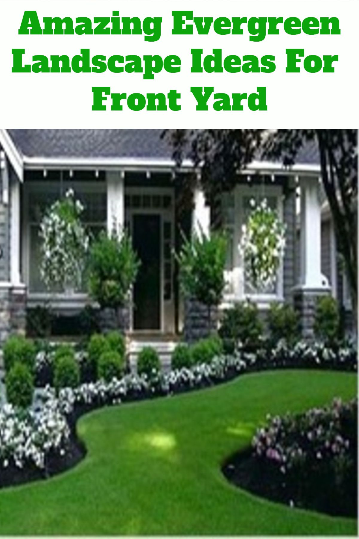 Front Yard Evergreen Landscape Design Ideas You Will Love Evergreen Landscape Landscaping Around Trees Landscaping Around House