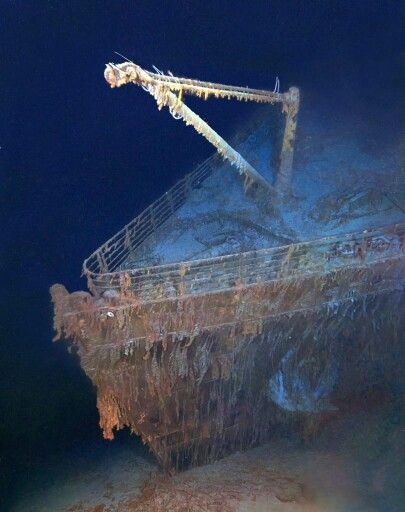Bow of the wreck.