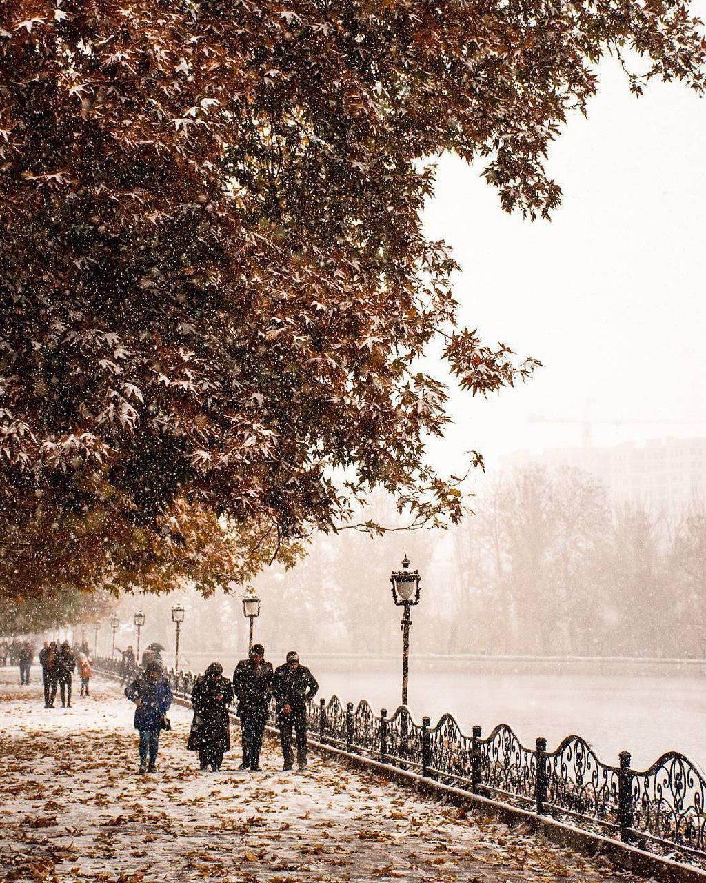 #Autumn comes with snow in the...