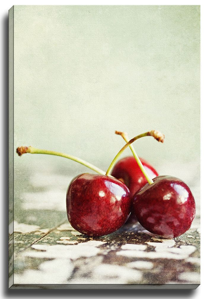 Cherry Bliss by Lisa Russo Photographic Print on Wrapped Canvas