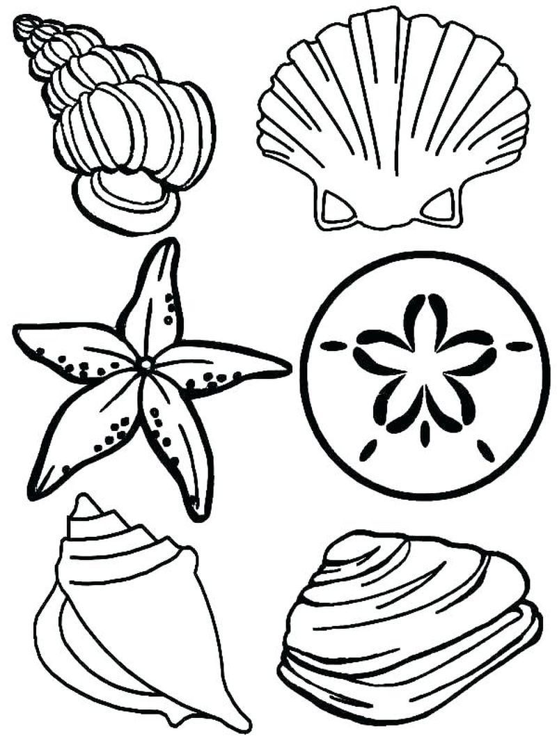 Ocean Fish Coloring Pages  Animal coloring pages, Family coloring