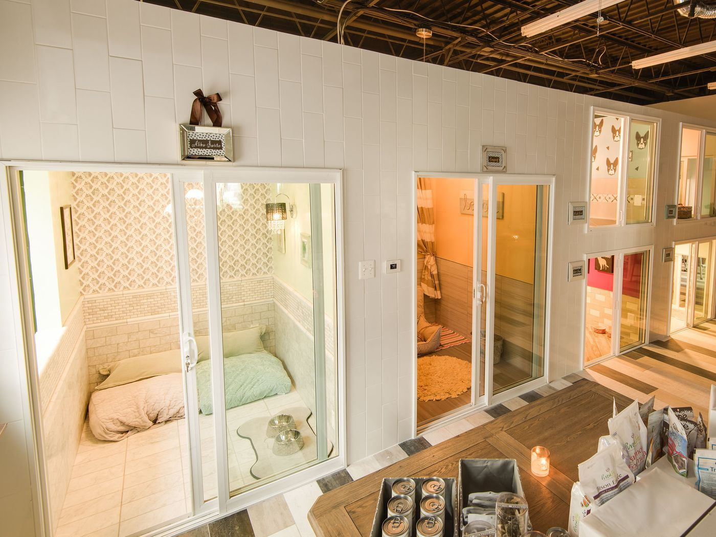 adams morgan will get a luxury pet hotel next year love rh pinterest ch
