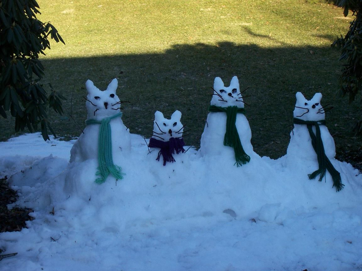 Winter cat by Emeraldus on DeviantArt  |Winter Scenes With Cats