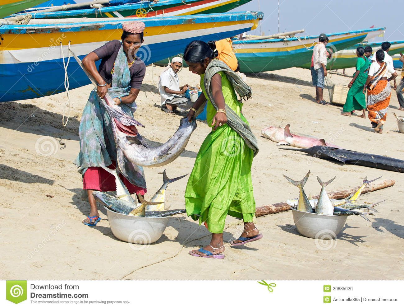 Women With Fishes At The Fish Market/India, fisherman