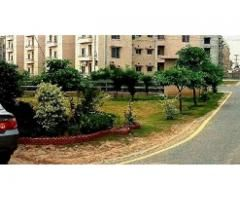 Askari 11 C Sector(apartments)for Families For Rent Lahore   Local Ads    Free Classifieds And Job Ads In Pakistan