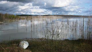Esoteerinen maantiede ja periferiaterapia: Toukoretkellä sisä-Suomessa: kaivoshistoriallinen osio SIILINJÄRVEN LOUHOKSEN ALLASMAISEMA