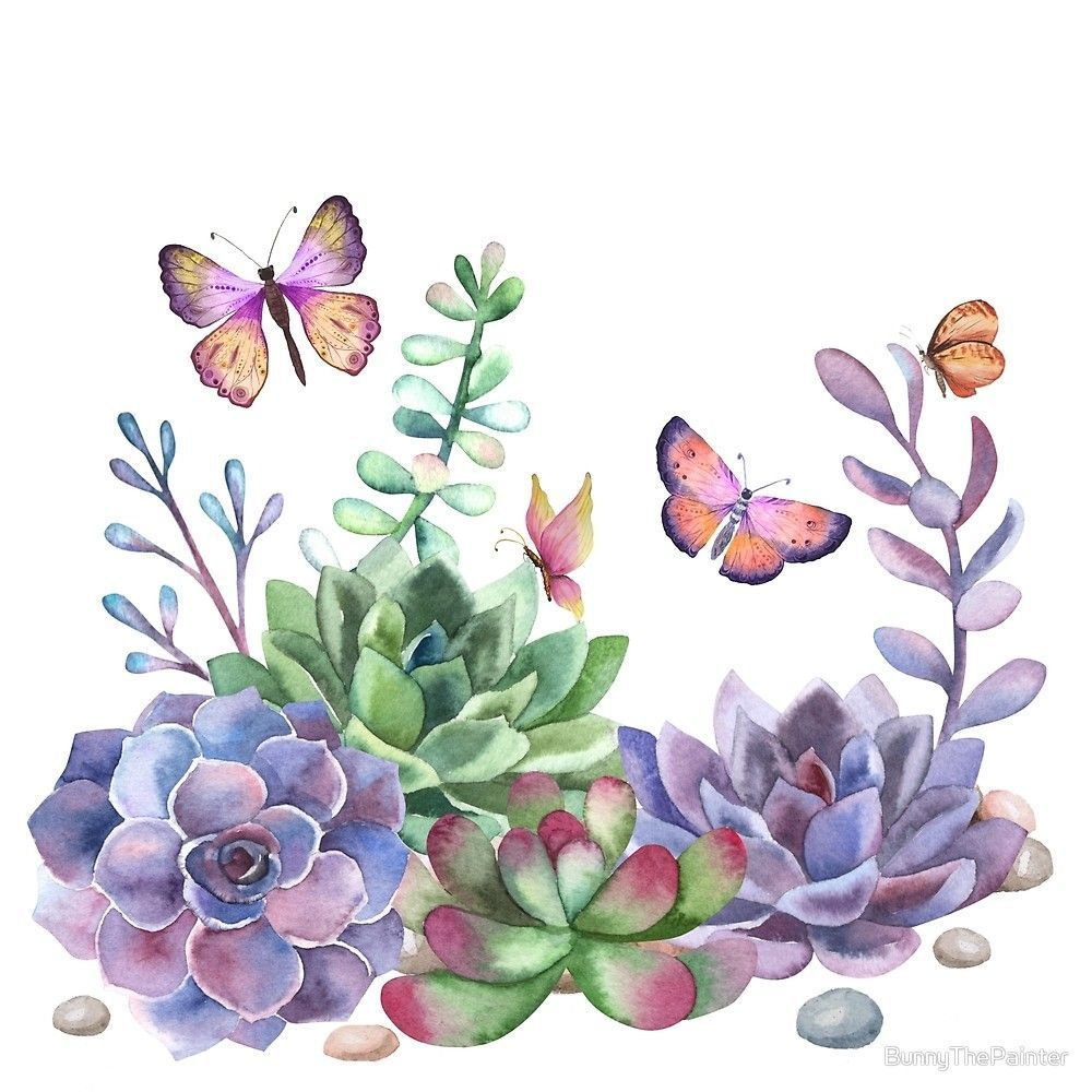 Photo of A Splendid Secret Succulent Garden With Butterfly Visitors by BunnyThePainter – …