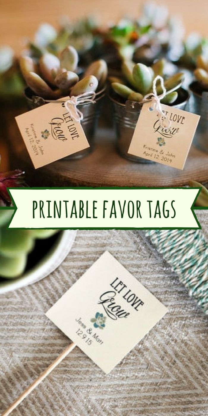 Printable tags for succulent party favors would