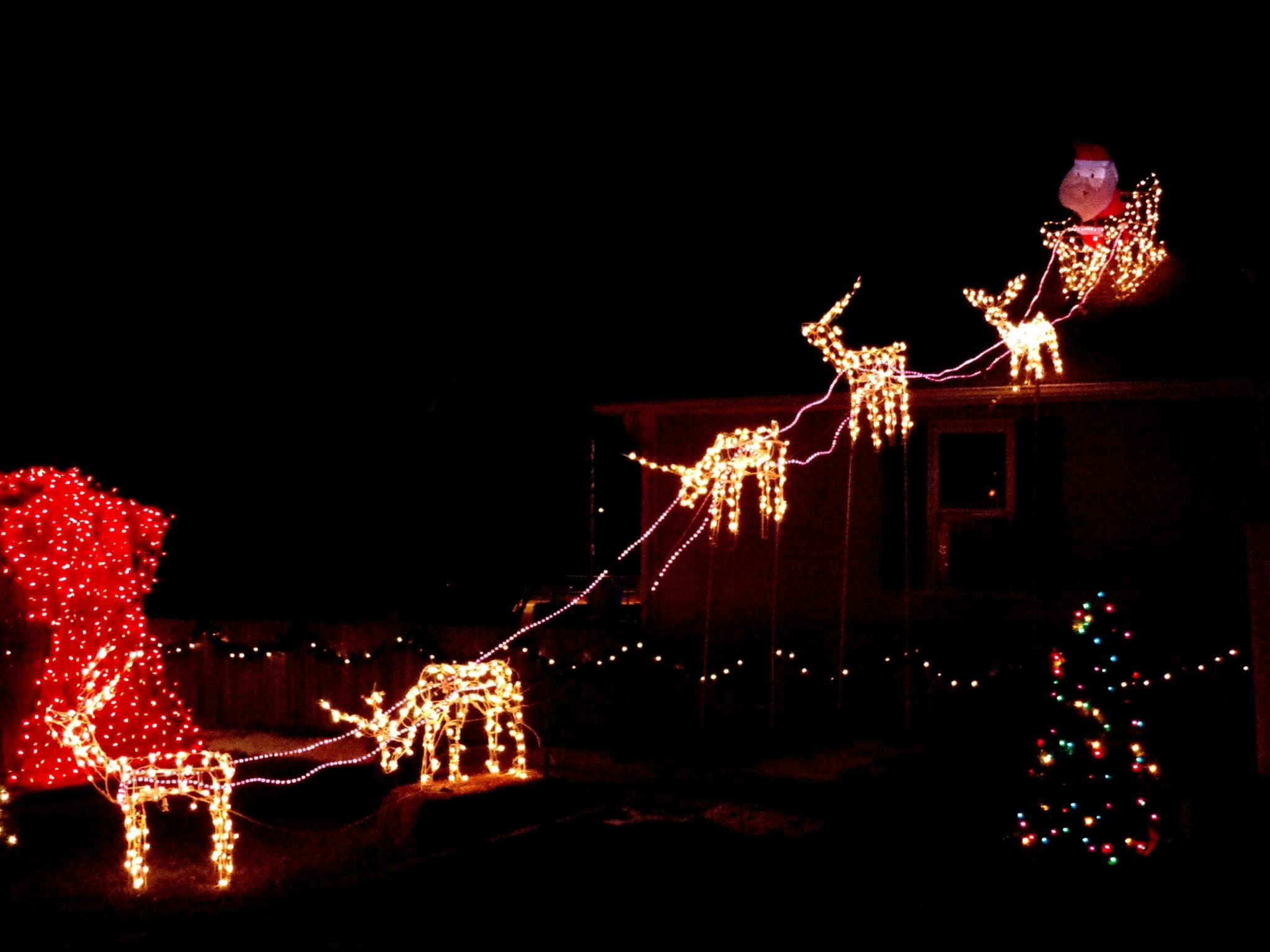 Outdoor Lighted Christmas Sleigh  What Is The Best Interior