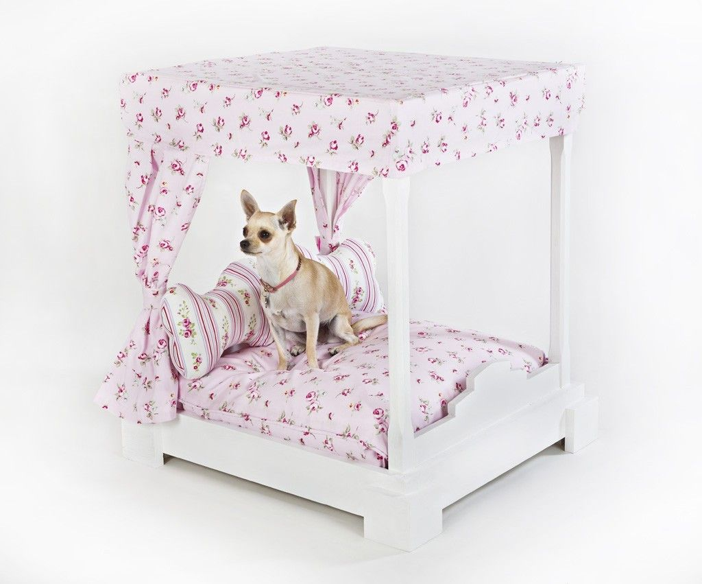 Anypaw Boutique Chiki Paws Ltd Boutique Dog Furnitures And Accessories Diy Dog Bed Dog Furniture Dog Boutique