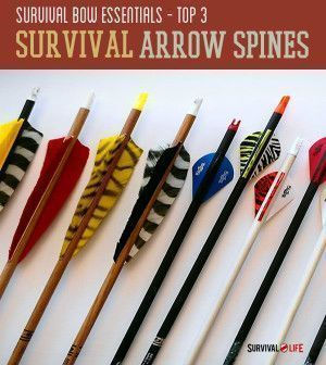 Top 3 Survival Arrow Spines | Choosing The Best Weapons for SHTF Scenario By Survival Life http://survivallife.com/2014/07/08/top-3-survival-arrow-spines/
