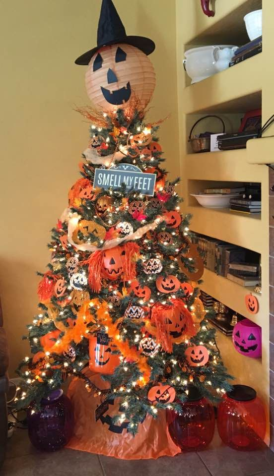 a new tradition our daughter and i hauled out the xmas tree and now have it out 3 months october is our halloween tree november is our fall tree and the