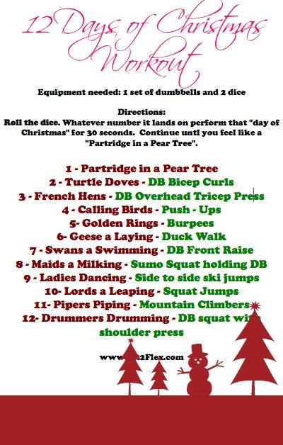 fun 12 days of christmas workout must do this with the family