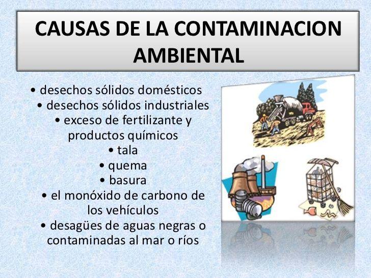 Prevencion De La Contaminacion Ambiental No Quemar Ni Talar Plantas Contaminacion Ambiental Problema Ambiental Contaminacion Ambiental Para Ninos