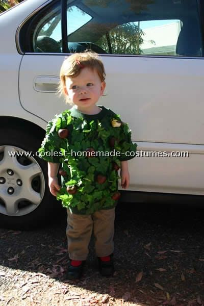 Original and easy costume for a child be an apple tree tree original and easy costume for a child be an apple tree easy costumeshomemade solutioingenieria Image collections