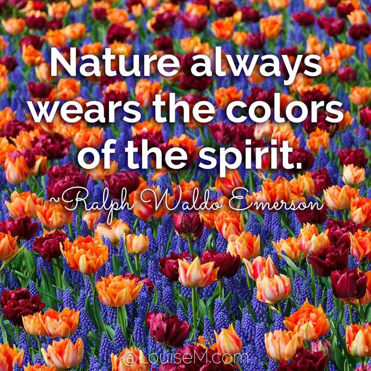 33 Colorful Quotes and to Energize Your Life